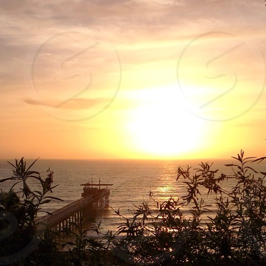 white sea port under the sunset photo