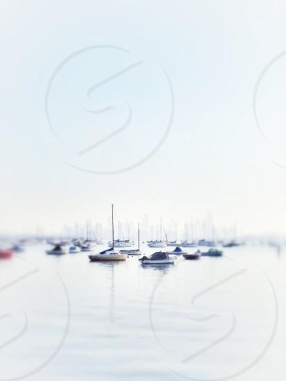 small white boats photo