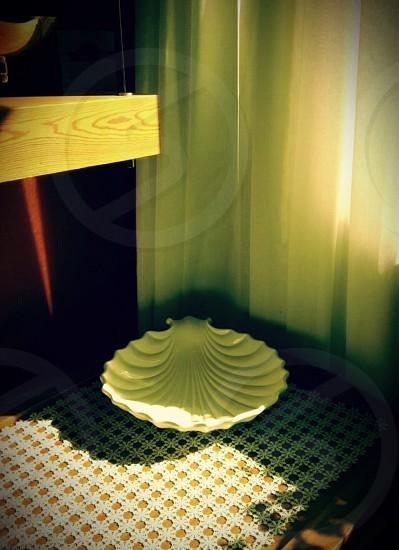 white ceramic shell photo