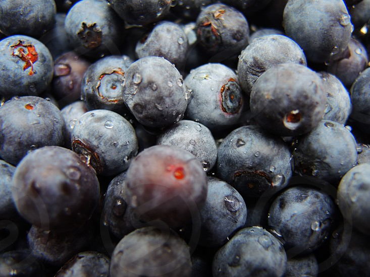 pile of wet blueberries photo