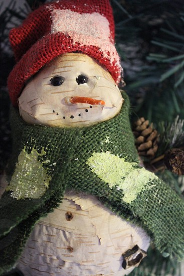 snowman with green scarf and red hat photo