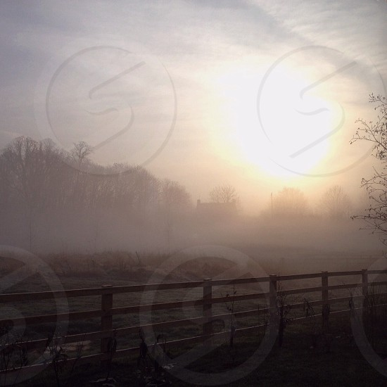 morning fog over a fenced in field photo