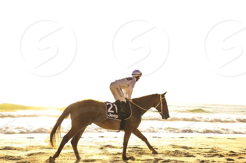 jockey riding a race horse at the beach Surfers Paradise Queensland Australia  photo