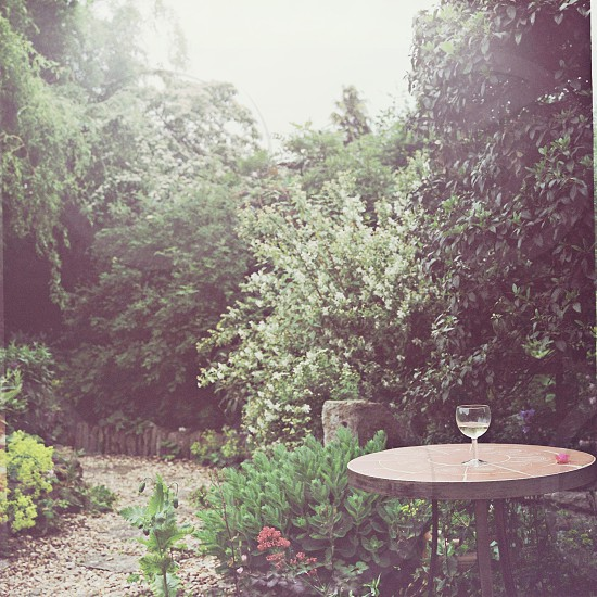 garden party party after party summer wine occasion forgotten event white wine photo