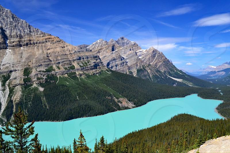 Peyto Lake - Banff National Park Canada. photo