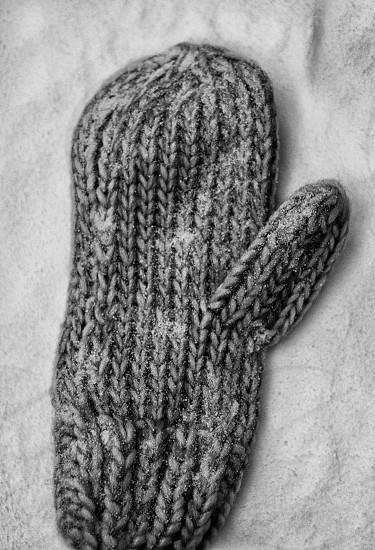 grey knitted mitten photo