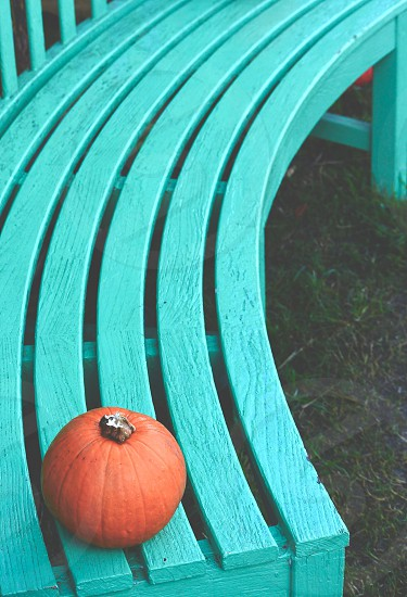 orange pumpkin on edge of teal wooden curve bench photo