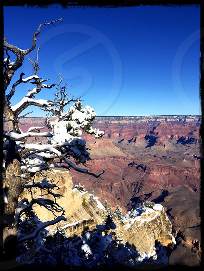 Grand Canyon 12-27-2016 photo