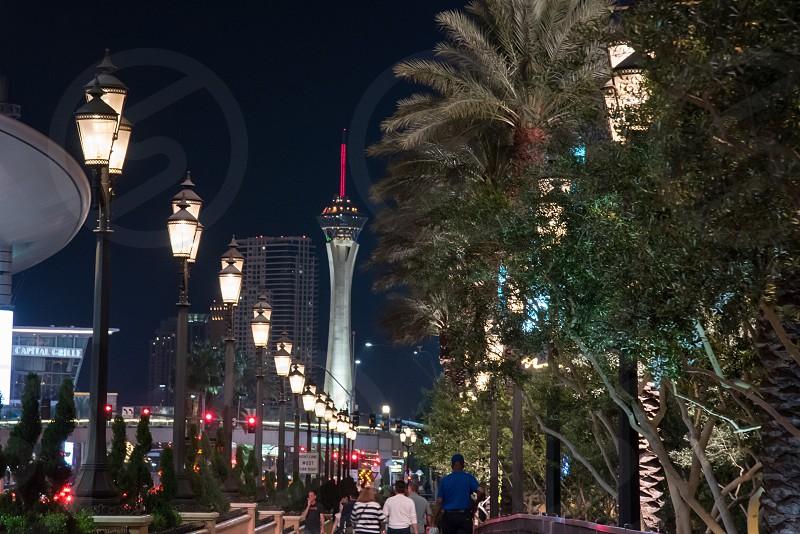 Las VegasVegasstripstratospherecitystreetlightsnighttourists photo