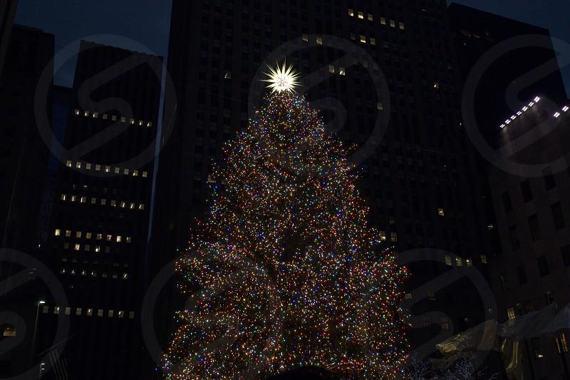 Christmas at Rockefeller Center NYC      photo