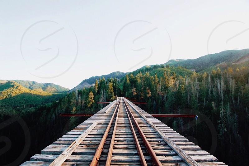Vance Creek Bridge photo