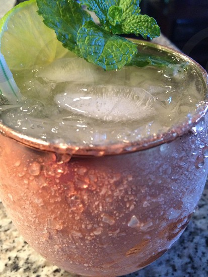 drink beverage frost Moscow mule mint ice alcoholic beverage photo