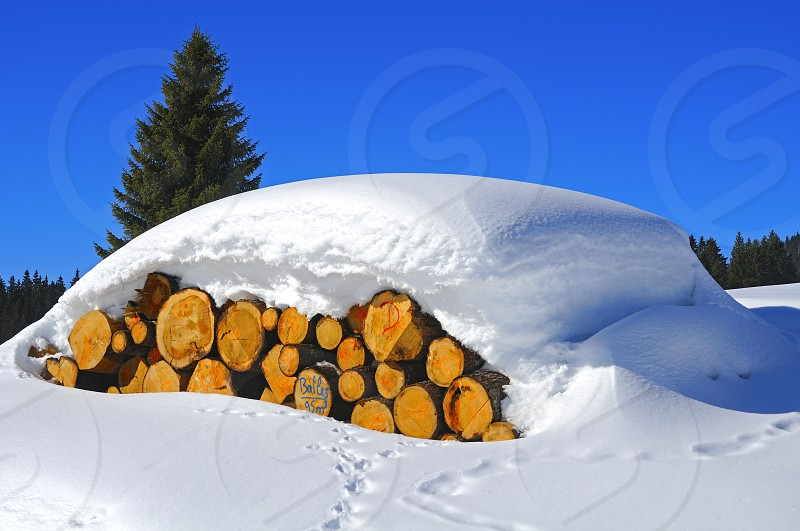 timber logs under a thick snow cover Jura region Switzerland photo