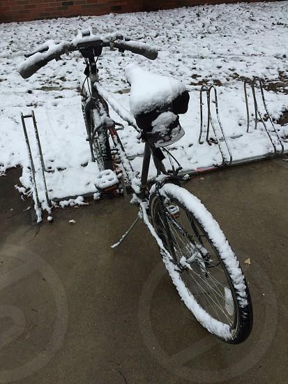 Bike bicycle snow winter white  photo