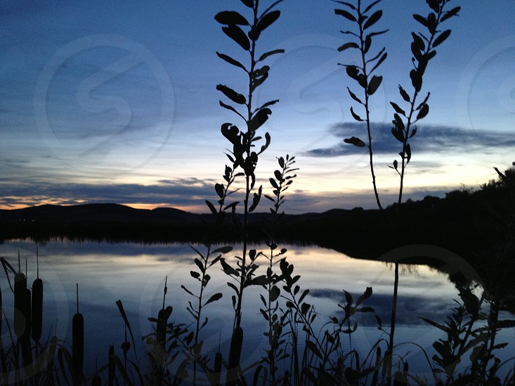 Sunset plants lake front hills reflection view scene sun setting evening sun set time of day eves water photo