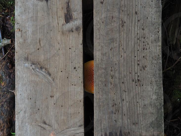 two rectangular gray wooden panels photo