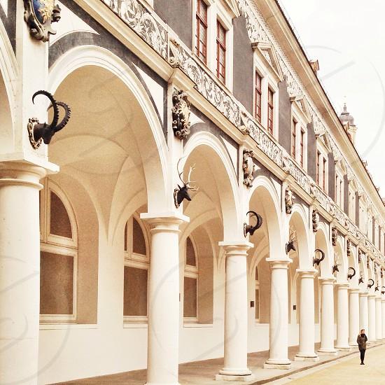 Dresden 2014 photo