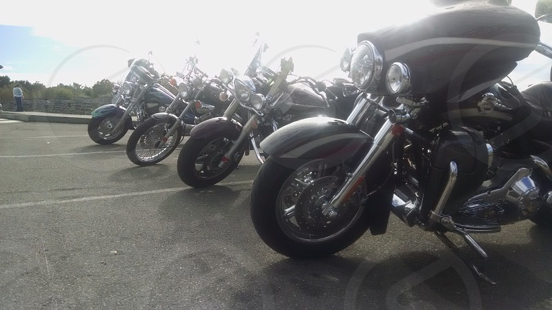 motorcycles in a line photo