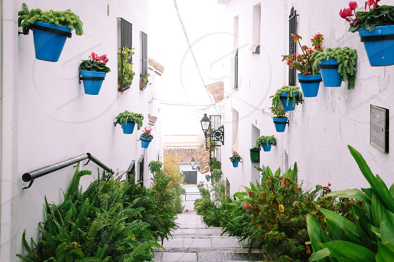 Spain Mijas Andalusia Europe street potted plants narrow street steps looking down street lamp photo