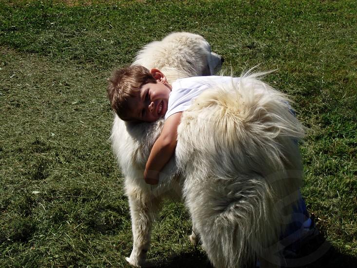 Dog and boy photo