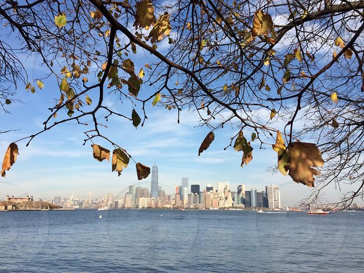Autumn on Liberty Island looking towards Manhatten November 2014. photo