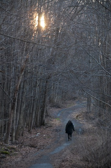 view of person wearing black jacket in the middle of forest photo