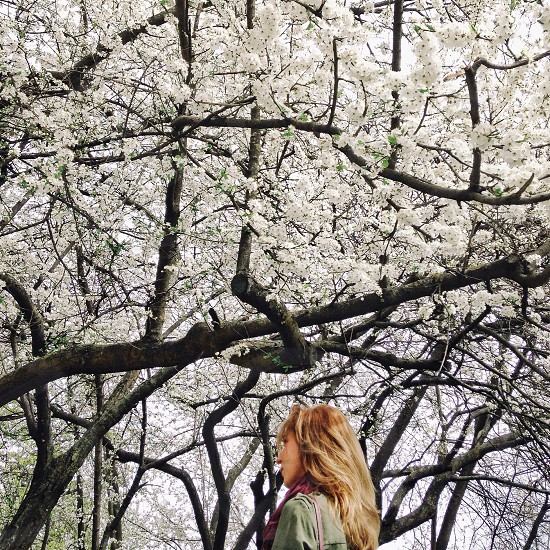 blonde woman wearing a green jacket standing under a white blossoming tree photo