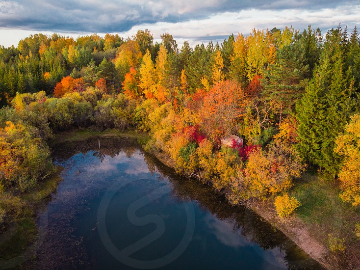 Autumn colors from drone perspective photo