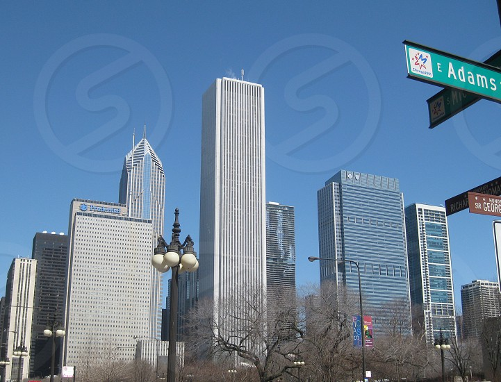 Chicago skyline from the ground up photo