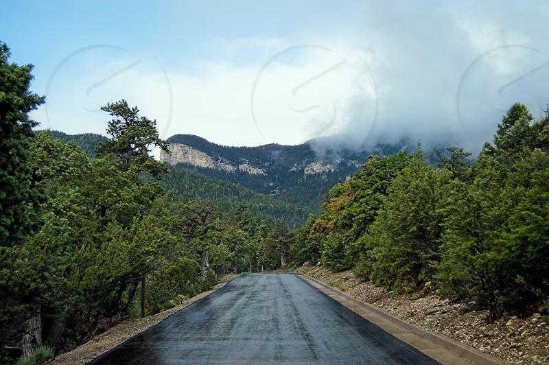 Mountains trees background landscape amazing  photo