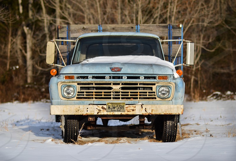 blue Ford F-100 on snow field in distant of withered trees photo