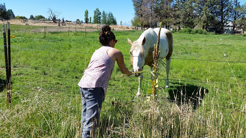 My Sarah feeding a horse in Central Oregon. photo