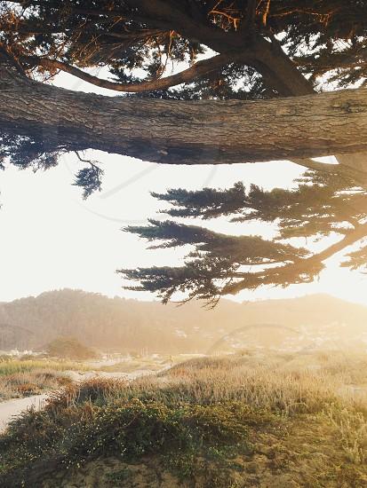 California coastline photo