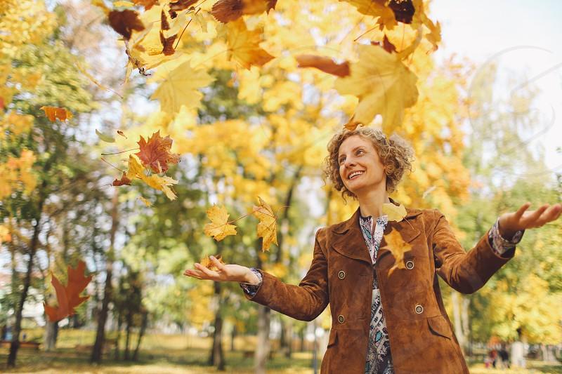 autumn leafs colors bistrita romania photo