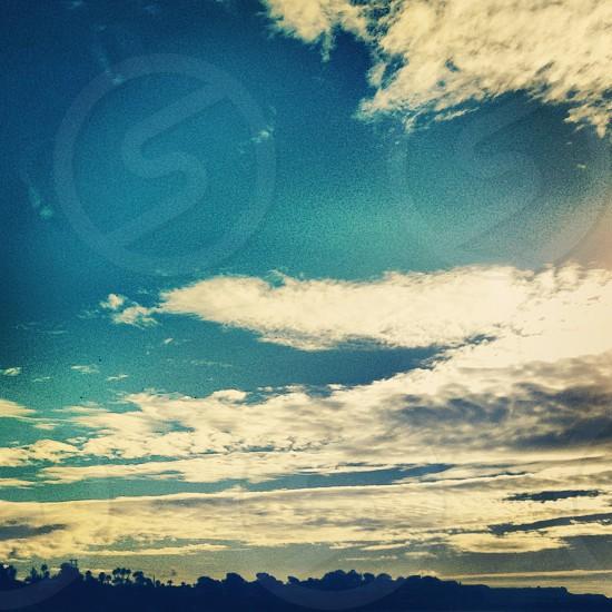 Sunny Daze photo
