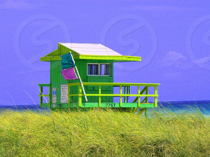 photography of green wooden house on green grass field during daytime photo