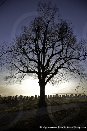 "Photograph of an old cemetery early morning as the fog is burning off.  The singularity of the tree represents that after all is said and done... ""We are all alone"" photo"