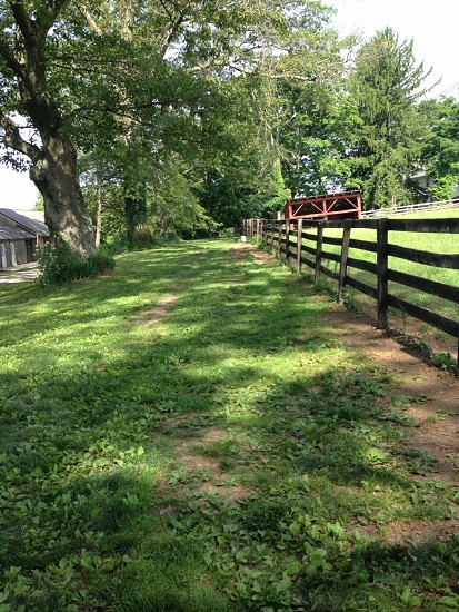 photo of wooden fence near barn in forest photo