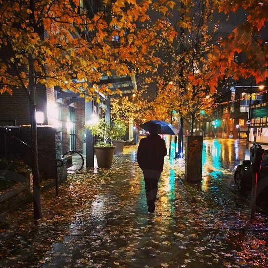 Walking home with my boyfriend down Richards Street in Vancouver BC. One of those special moments for a beautiful photo. photo