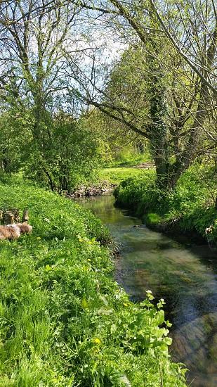 Nature of Milton Keynes photo