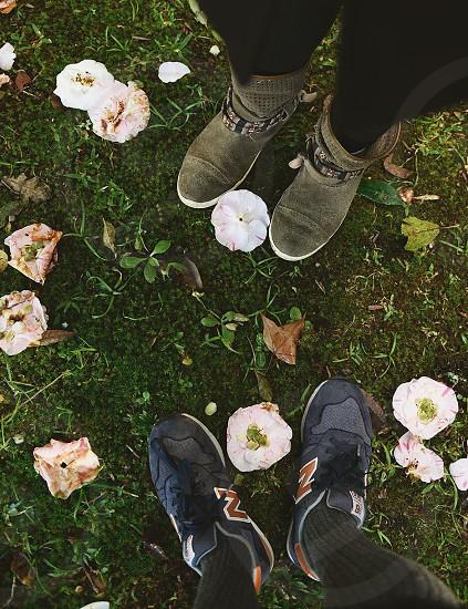 fall autumn flowers feet photo