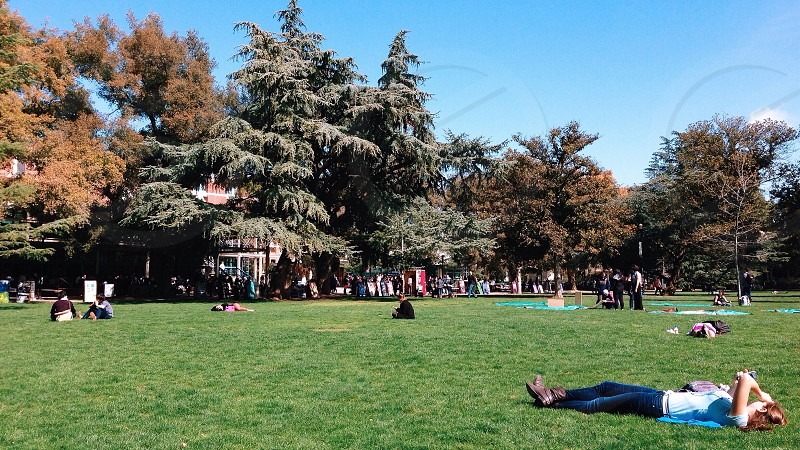 UC Davis MU Quad photo
