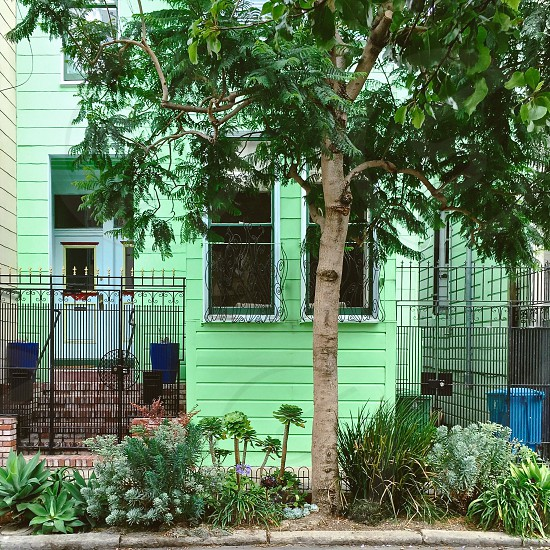 Green house photo