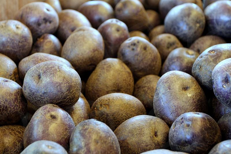 Purple patriot potatoes at farmers market photo