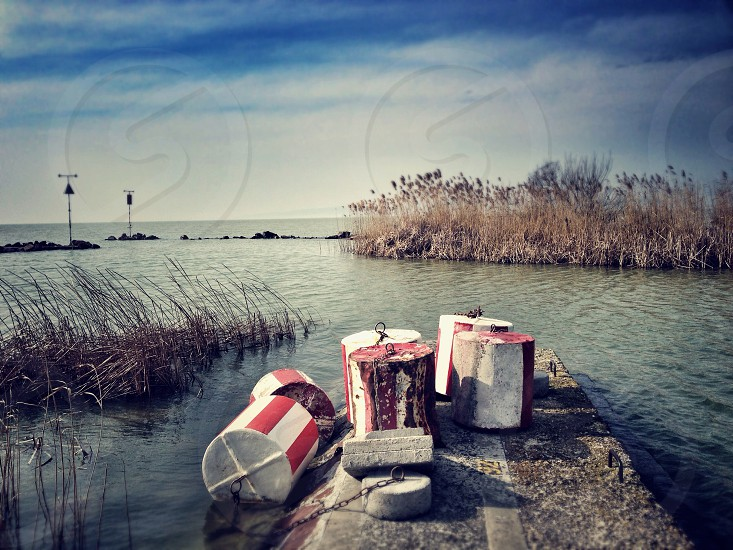 red and white cylinder buoys on grey concrete dock in grey water with brown reeds under blue and white cloudy sky photo