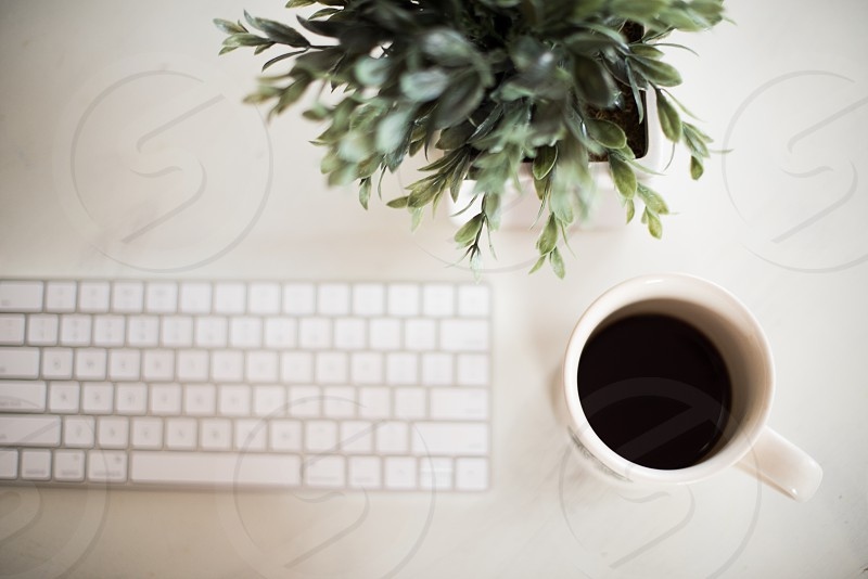 Coffee stock photo keyboard plants business motivation photo