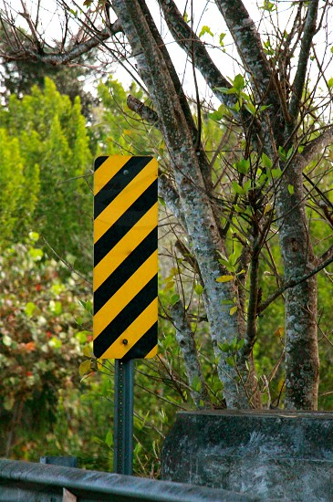 black and yellow diagonal stripe rectangular sign on side of road under trees photo
