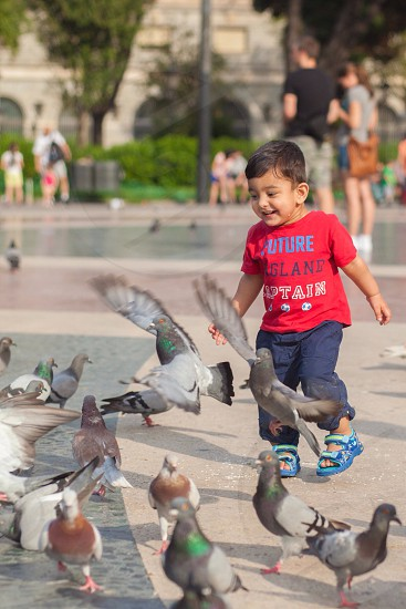 boy in blue pants chasing pigeons photo