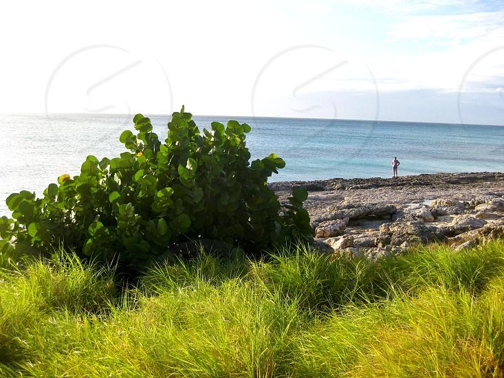 Aruba Ocean Caribbean photo