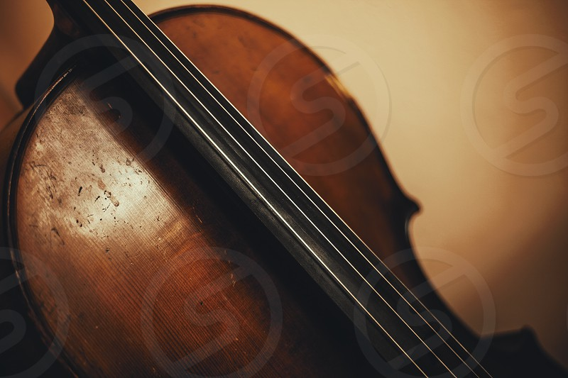 Closeup of an old cello body and neck part.  photo